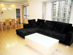 The First Block Apartment for rent near People's Square