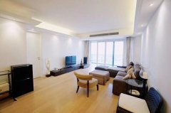 High-End Apartment in French Concession