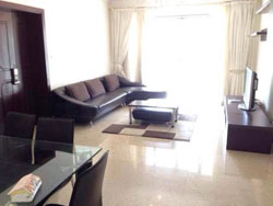 Big renovated Central Park apartment for rent in Xintiandi