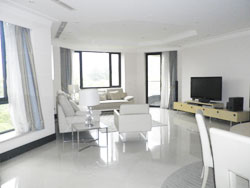 Luxury bright 3BR apartment for rent in Belgravia in French C