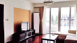 Revovated apartment for rent near Jingan Temple