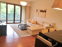 Bright apartment for rent in Lakeville Regency in Xintiandi
