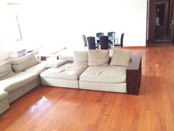 Big and bright apartment in Lakeville in Xintiandi for rent