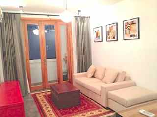 shanghai expat housing Homely apartment for rent in French Concession
