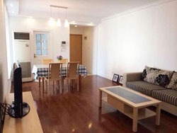 Renovated apartment in Oriental Manhatta with new furniture