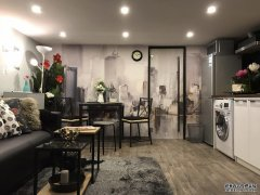Stylish Downtown Apartment for rent