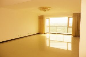 Huge and bright 3BR apartment in centre of Shanghai