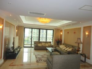 Big and luxurious 5br apartment with office